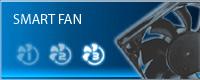 hf2-feat-fan
